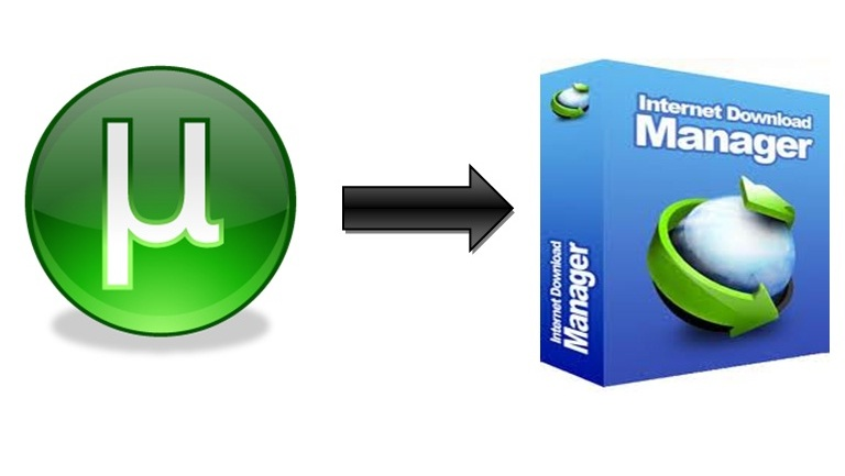 video software like idm